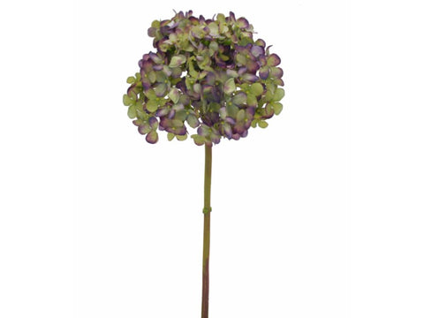Green/Purple Hydrangea Short Stem #195705EPGR00
