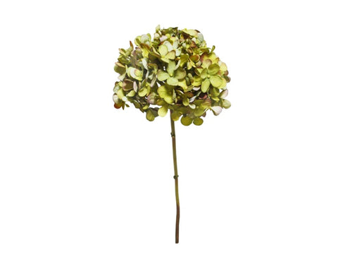 Green Hydrangea Short Stem #195705GRPU00