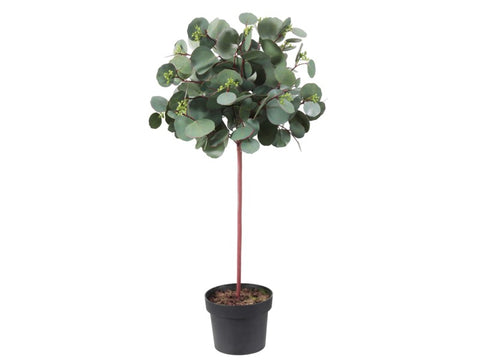 Potted Round Eucalyptus #1PG1112GR00