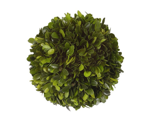 "6"" Boxwood Ball #1PG3129GR00"