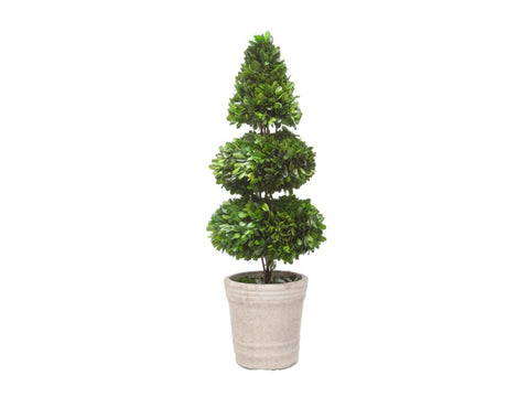 Potted Boxwood Topiary #1PG3153GR00
