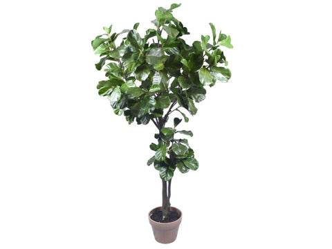 Large Fiddle Leaf Tree #1PG80000GR00