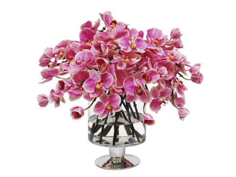 Pink Orchids in Compote Vase #1SDP347PUWH00