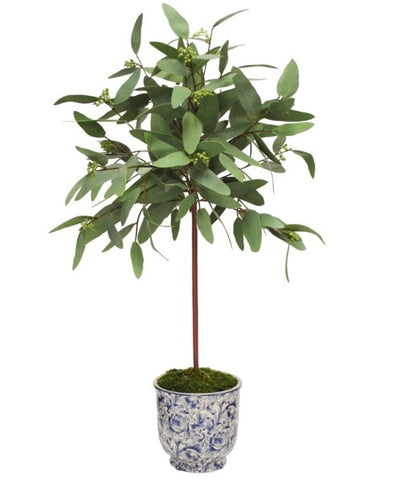 LONG EUCALYPTUS IN CACHE POT 30'' #SDP478.GR00