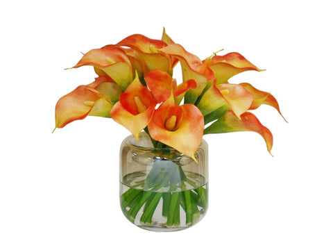 Sunset Calla Lilies in Rounded Vase #1SDP513OR00