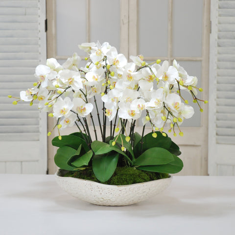 WHITE ORCHIDS IN BOWL  #D1055.WH
