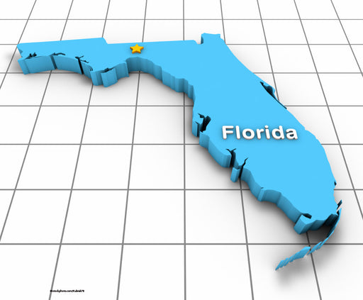 PACKAGE: Florida 2017 Core Courses | HIV Review, Domestic Violence, Medical Error Prevention & Risk Management  | 6 CEs - MyDentalCE.com | Continuing Education & OSHA Training