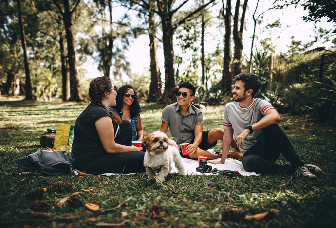 7 easy steps to transform a picnic into wonderful  family time
