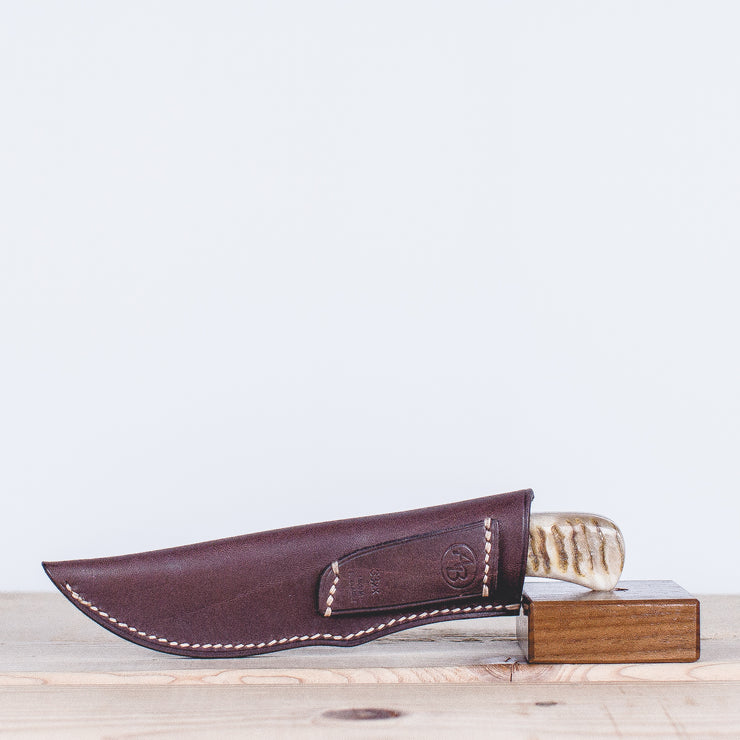 Warthog Hunting Knife - Sheep Horn