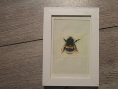 Bumble Bee Print on Canvas