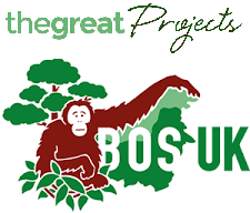 The Great Projects Logo and BOS UK Logo