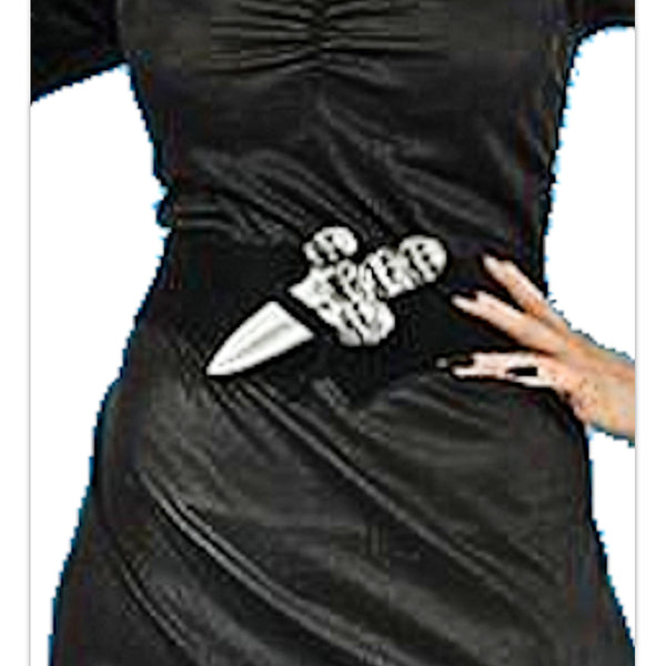 Elvira Daughter of Darkness Sorceress Women's Halloween Costume