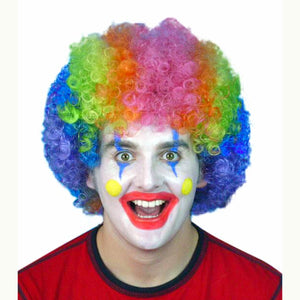Rainbow Colour Clown Curly Wig Fancy Dress Costume party Wig