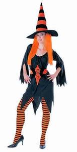 Hagatha The Witch Fancy Dress Womens Halloween Costume With Hat