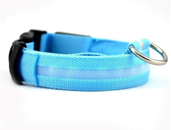 FREE LED Bright Glow-In-The-Dark Dog Collar - mobile