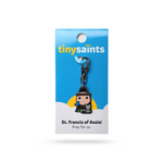 Tiny Saints - St. Francis of Assisi - Patron of Animals, Pets, Pet Owners, The Poor