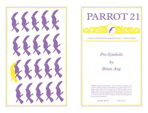 Parrot 21 Pre-Symbolic by Brian Ang
