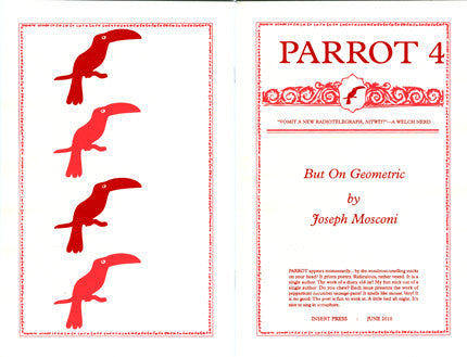 PARROT 4 But On Geometric  by Joseph Mosconi