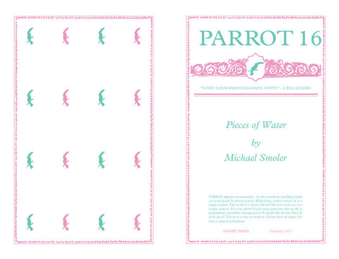 Parrot 16 Pieces of Water by Michael Smoler