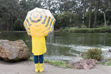 Pluie Pluie Clear Umbrella with Yellow Stripes