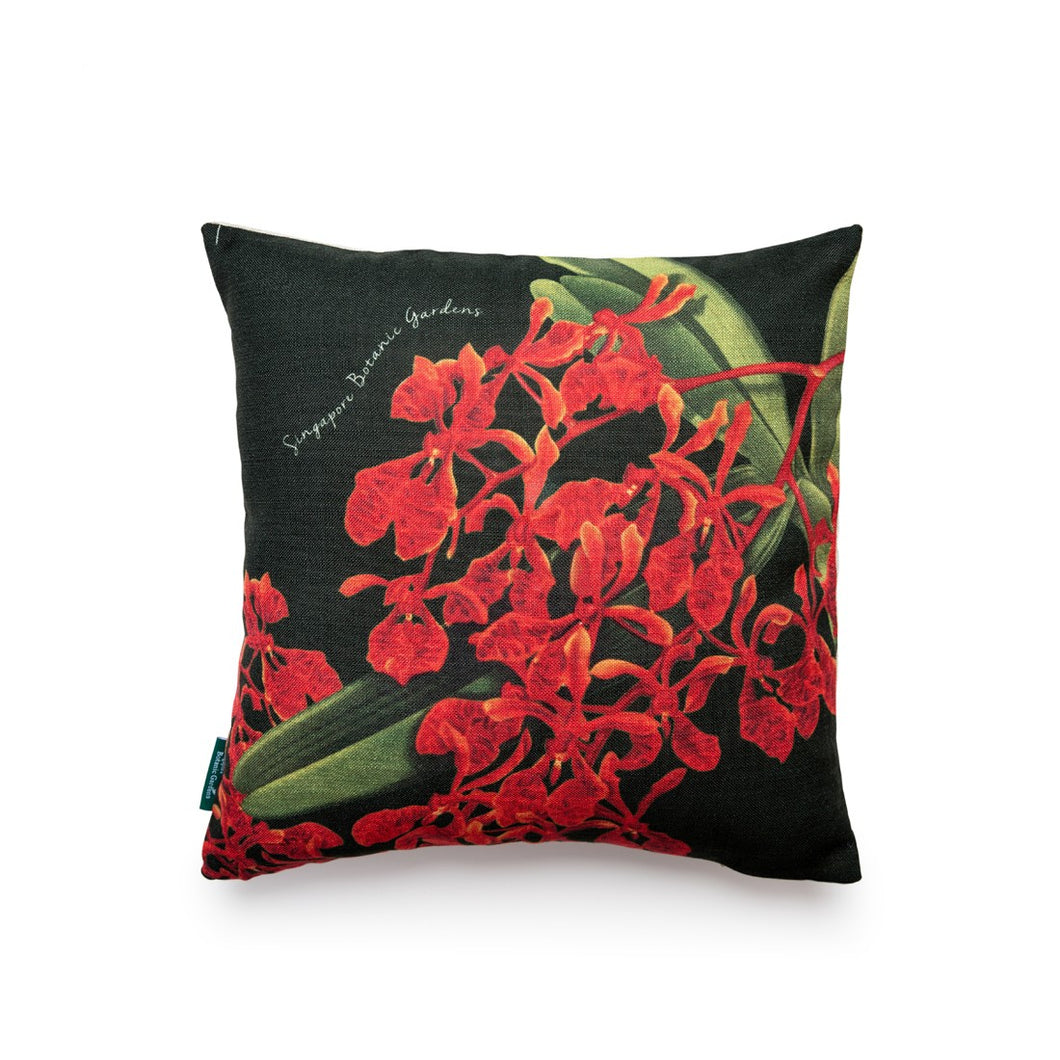 Renanthera Orchid Black Cushion Cover