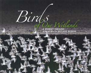 birds-of-our-wetlands-journey-through-sungei-buloh-reserve