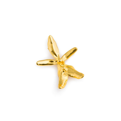 24k-gold-plated-renanthera-brooch
