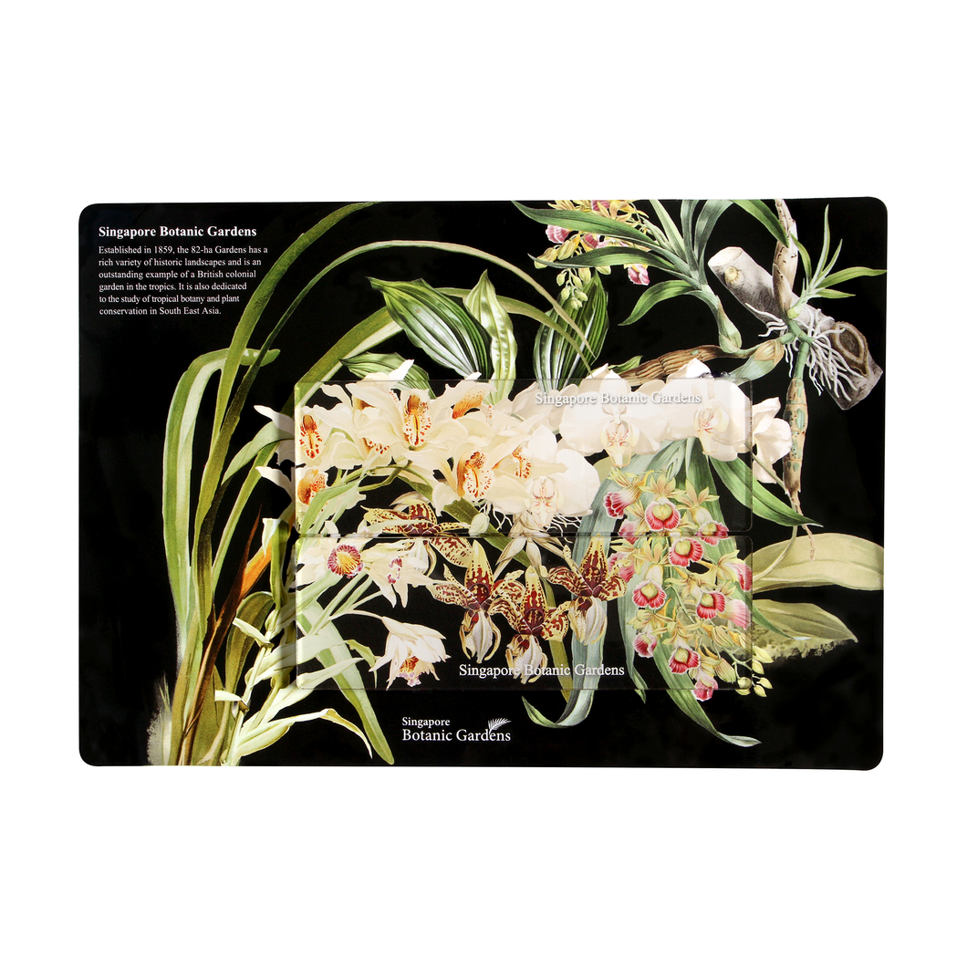 Orchid Collection Long Magnet Set