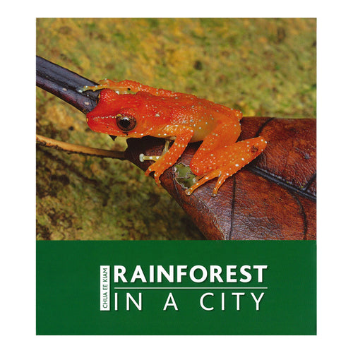 rainforest-in-a-city