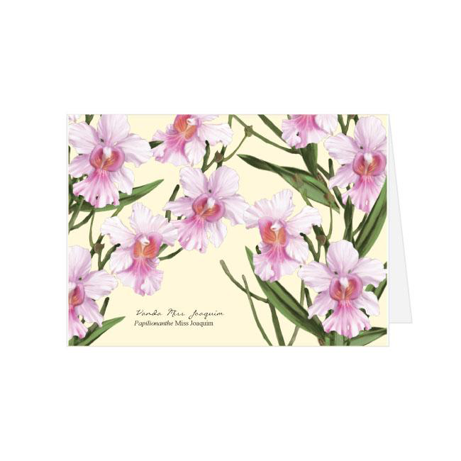 Vanda Miss Joaquim Greeting Card