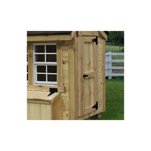 EZ-Fit 4'x6' Chicken Coop