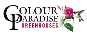 Colour Paradise Greenhouses