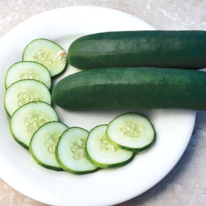 Cucumber 'Sweet Slice'