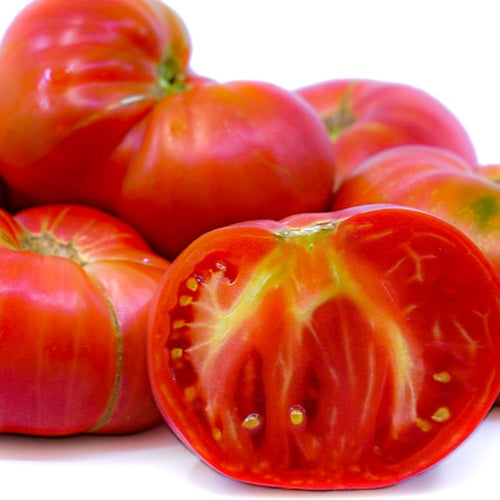 Tomato Brandywine Pink, Colour Paradise, Kitchener Wateerloo