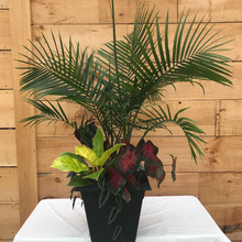 Load image into Gallery viewer, Planter, Tropical, Mixed, Large