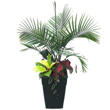Load image into Gallery viewer, Planter Tropical Mixed large, Colour Paradise, Kitchener Waterloo