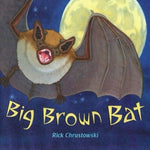 Big Brown Bat (Ages:4-8)