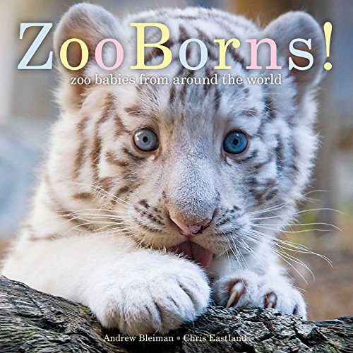 ZooBorns! (Ages:4-8)