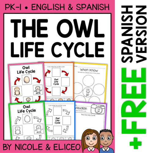 Snowy Owl Life Cycle Activities