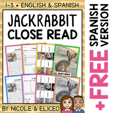 Load image into Gallery viewer, Jackrabbit Close Reading Passage Activities
