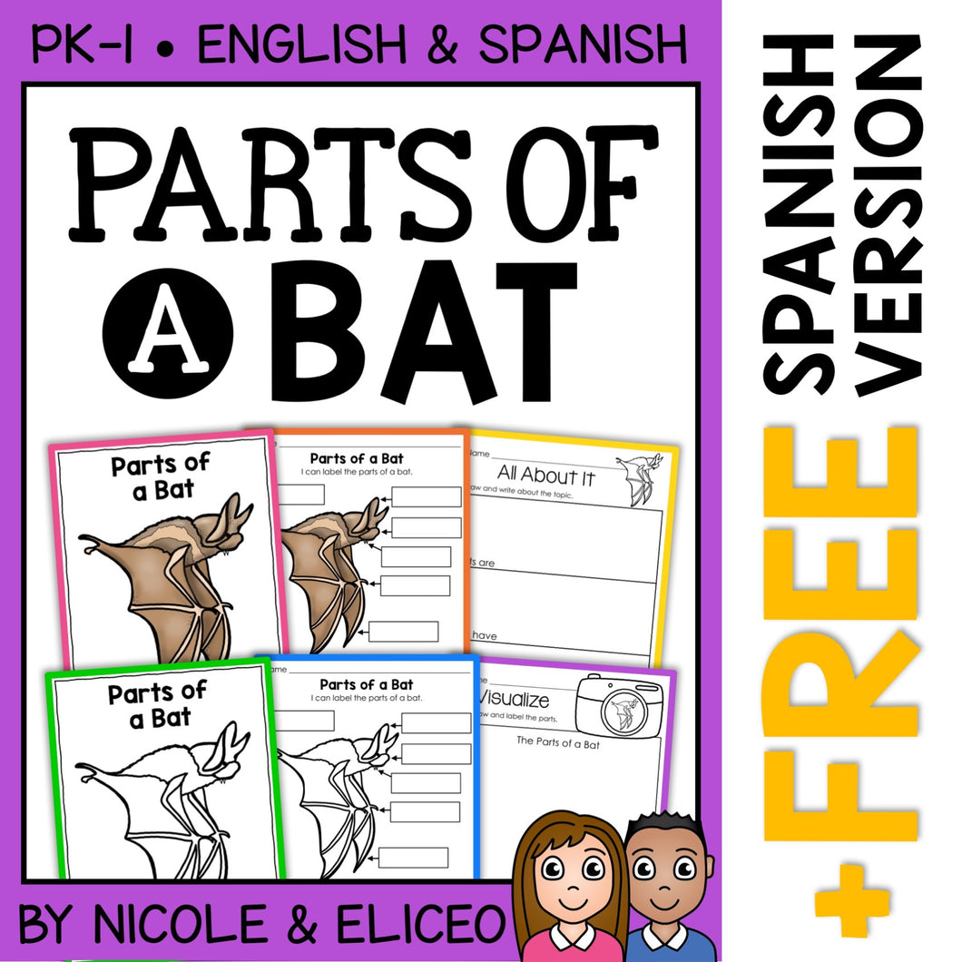 Parts of a Bat Activities