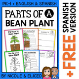 Parts of a Bean Plant Activities