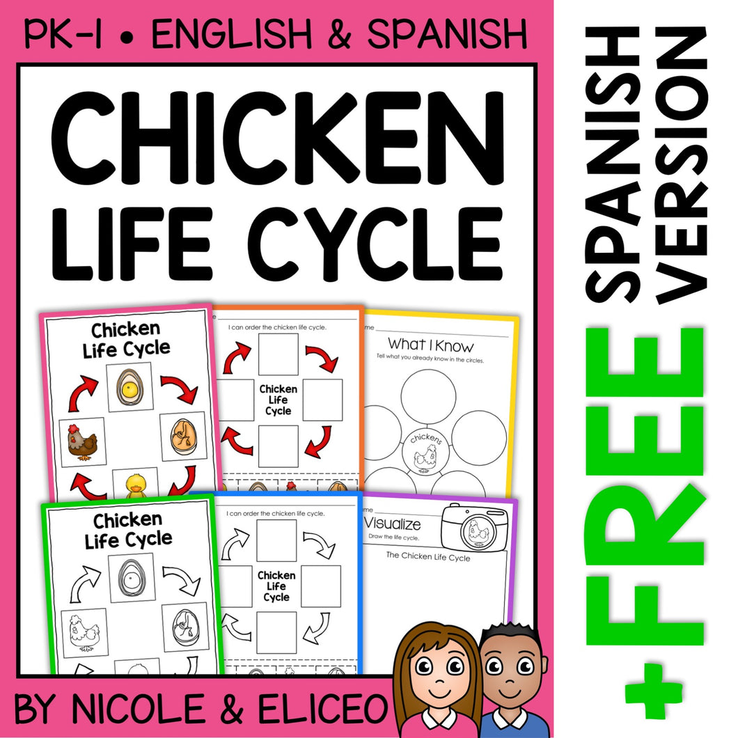 Chicken Life Cycle Activities