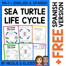 Load image into Gallery viewer, Sea Turtle Life Cycle Activities