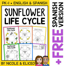 Load image into Gallery viewer, Sunflower Life Cycle Activities