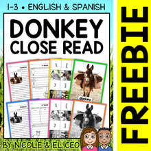 Load image into Gallery viewer, FREE Donkey Close Reading Passage Activities