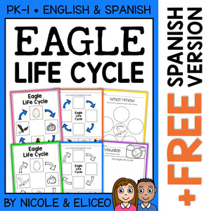 Bald Eagle Life Cycle Activities