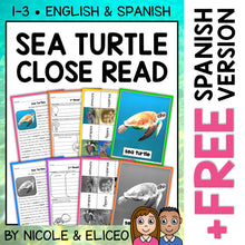 Load image into Gallery viewer, Sea Turtle Close Reading Passage Activities