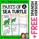 Parts of a Sea Turtle Activities
