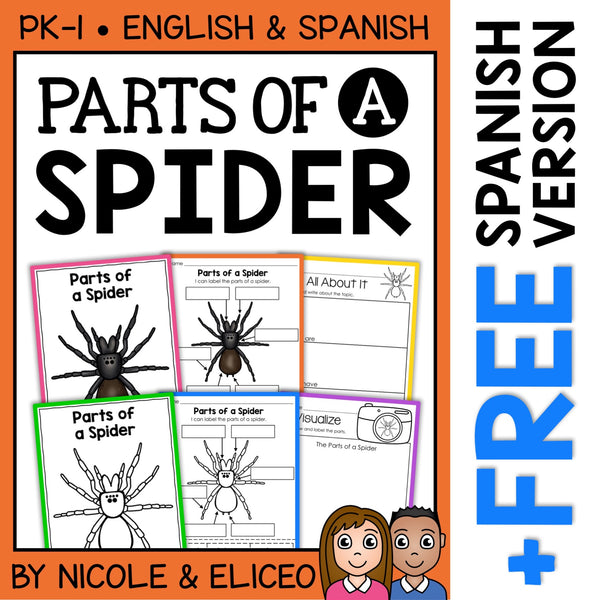 Parts of a Spider Activities